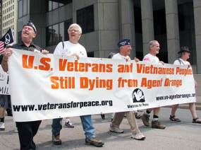 American, Australian, Canidan and Korean veterans have struggled for decades to get assistance for Agent Orange affected soldiers and their families. Several court cases have been rejected due to legal technicalities. After years of lobbying, US veterans now have limited access to medical assistance through a US Defence Department programme.