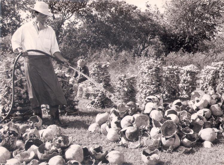 VietnamesescientistsonKampucheakillingfields1988